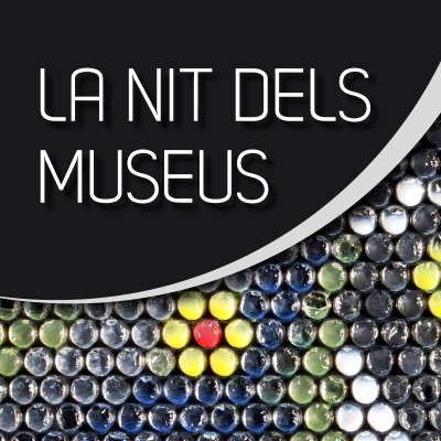 Proposal for the Museums Night in BCN